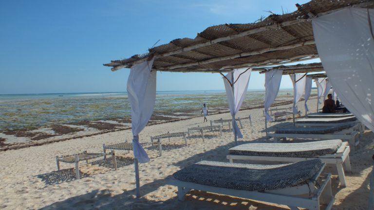 Safari Blu Sardegna 2 Safari Blu Sardegna Due