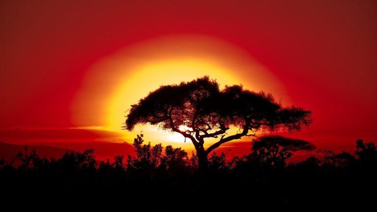 Safaris And Excursions Kenya 2020 Safari 3 Days Masai Mara